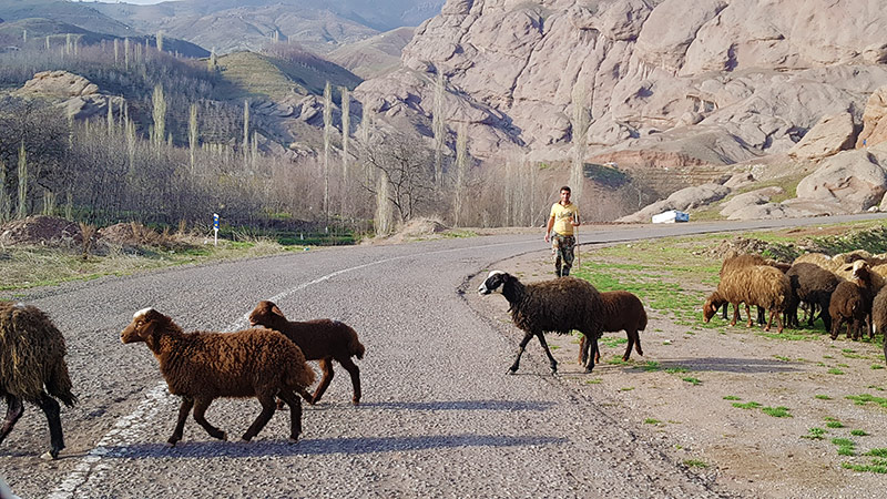 Alamut Day Tour in Epic Valley