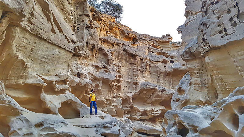 Qeshm, the Heaven of Geotourism in The Middle East