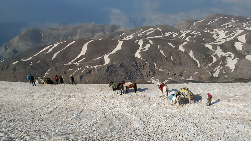 A Migration Journey with Iran Nomads