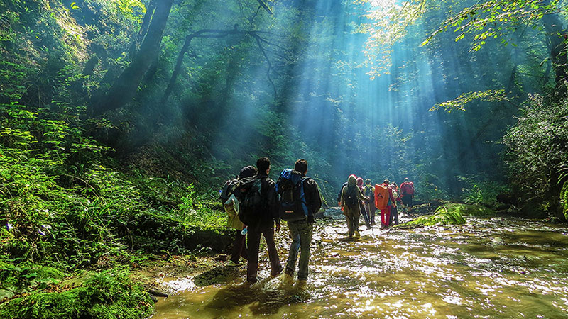 Top Things to Do in Gilan